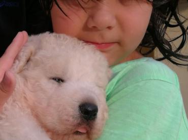 Unico: il cucciolo sopravvissuto